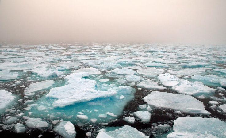 Die Grönlandsee ist eine 1.2 Mio. Quadratkilometer grosse Wasserfläche, die ozeanographisch sehr